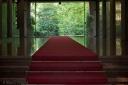 Red carpet, forrest