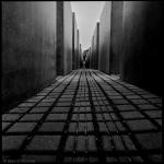 Max S. Volonté Photography MFB020-09