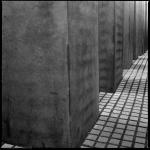Max S. Volonté Photography MFB021-03
