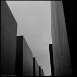 Max S. Volonté Photography MFB021-04