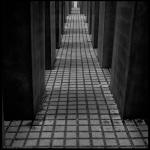 Max S. Volonté Photography MFB021-06