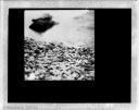 - Gravel on the lake bank