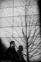 Man and tree shadows