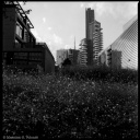 "Cityscapes in Milan, Italy, new ""Varesine"" buildings and gardens"