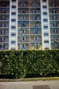 Cityscape of pop buildings of flats and green plant