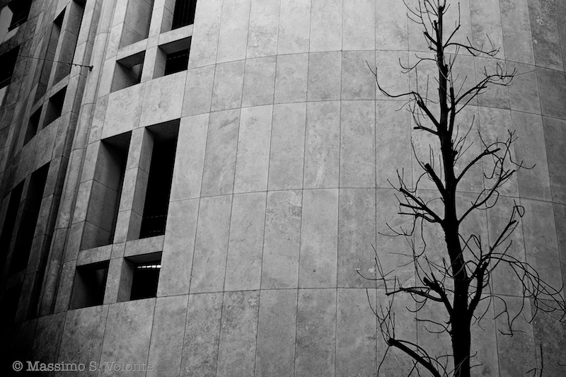 volonte fotografo milano - truncated figures of tree and building