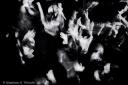 Dancing people, hands up, clubbing, fotografo milano