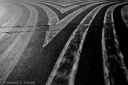 Road white stripes, Valencia, monochrome, fotografo milano