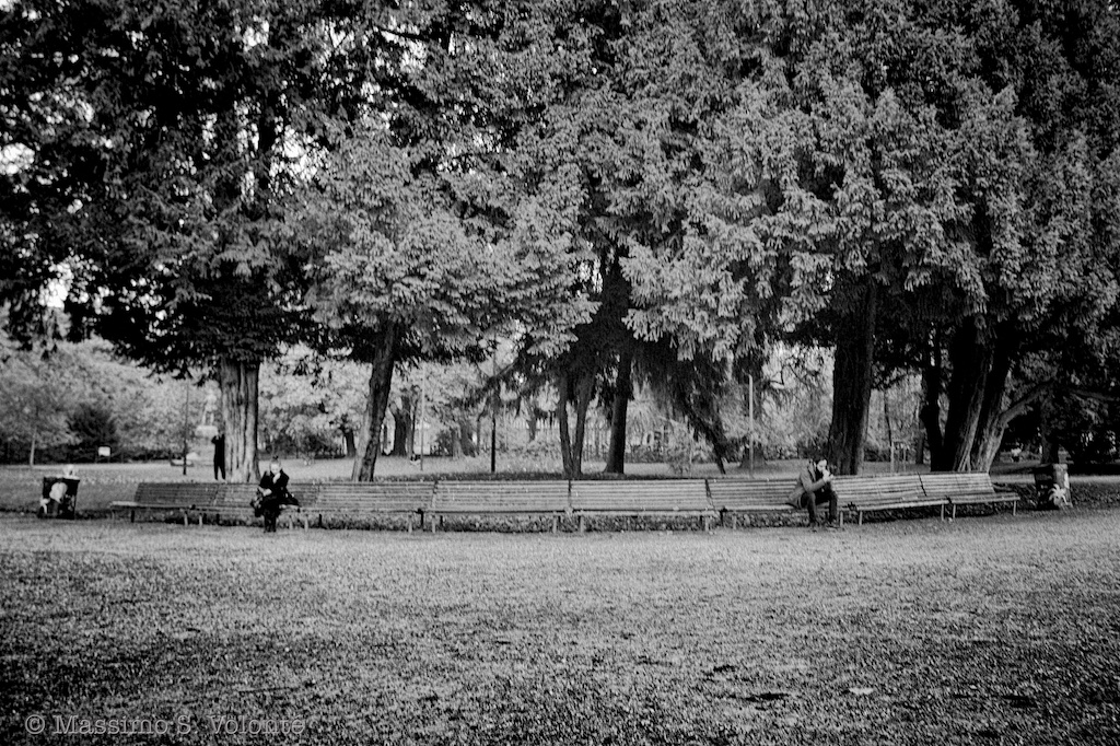 Lonely persons on a long bench under the trees, monochrome, fotografo milano