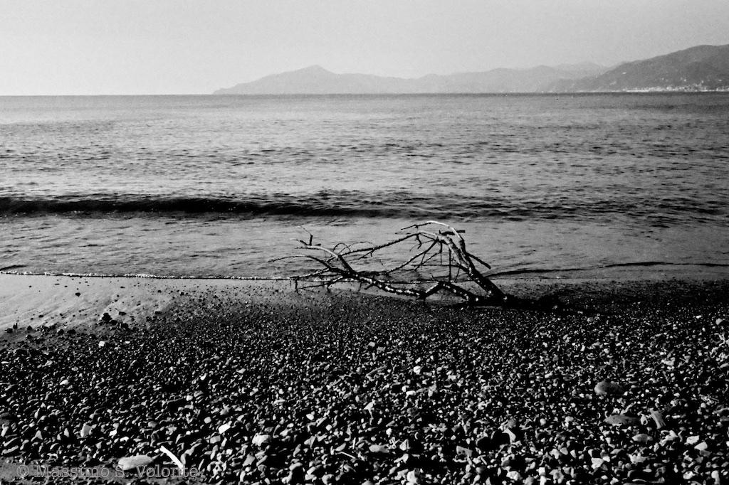 The sand, the sea, monochrome, Volonte fotografo Milano