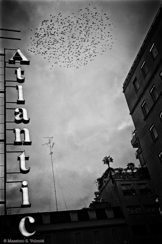 Immigrants, Monochrome, Volonte fotografo Milano